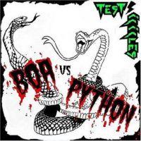 """Test Icicles - """"Boa vs. Python"""" - Domino Records"""