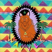 "Wavves – ""King of the Beach"" LP/CD – Fat Possum Records"